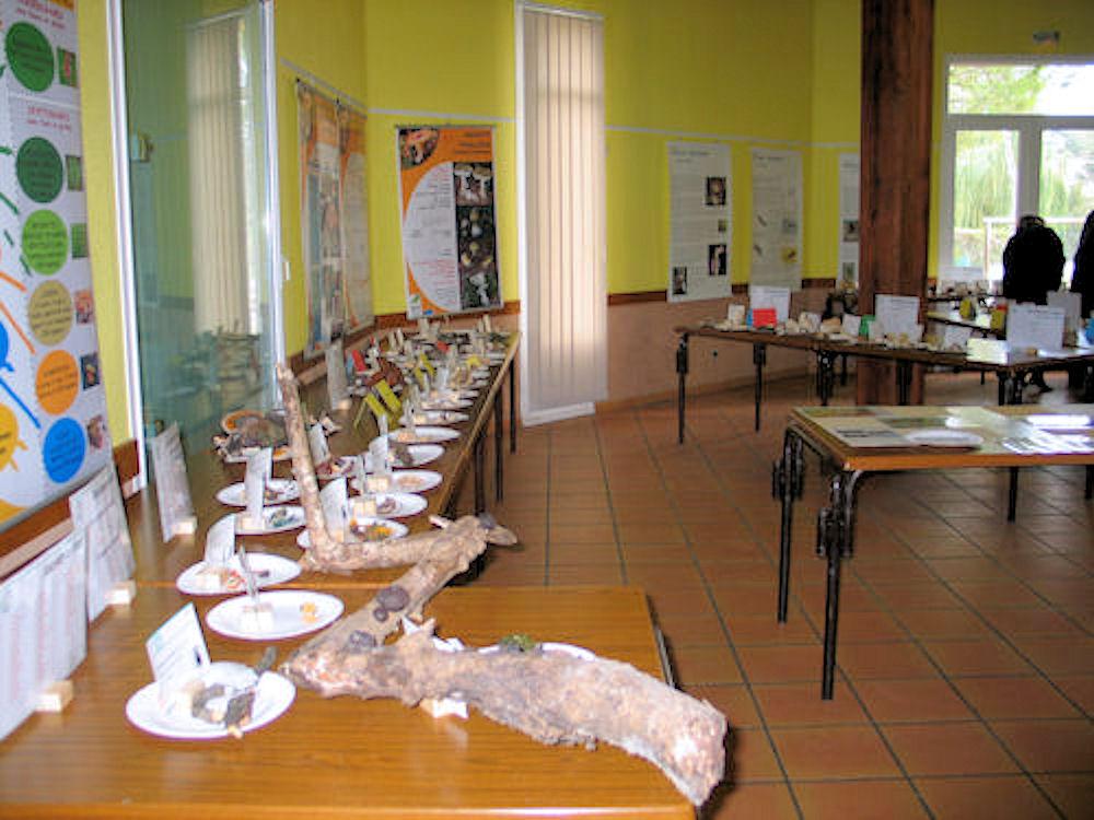 Les amis de saturnin garimond realisations 2009 for Salon les amis